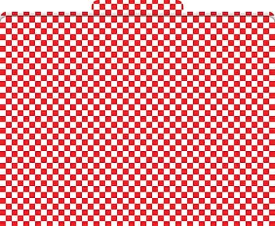 Barker Creek Red Check Decorative File Folders, Letter, 3 Tab, 12/pack (LL1316)