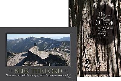 Barker Creek Natural Wonders Poster Duet, 13 3/8