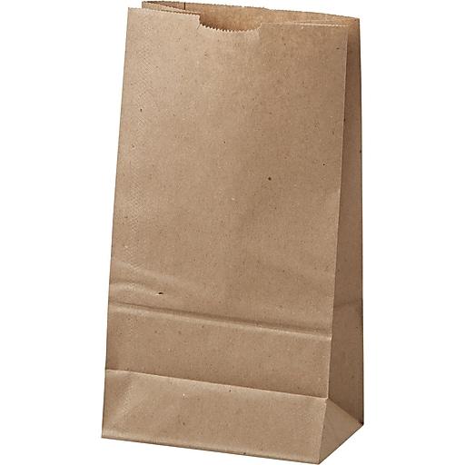 Standard Duty Natural Paper Bags 6 11 1 16 H X W 3 5 8 D 500 Cs