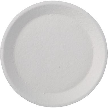 Chinet® Savaday® Dinnerware Plate, 22 3/4