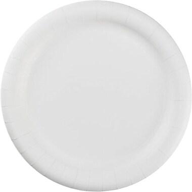 Hoffmaster® PL7095 Dinnerware Plate, 9