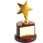 Bey-Berk Star Trophy,  Gold Plated