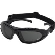 Dentec Hornet Foam-lined Black Frame Safety Glass, Grey Lens