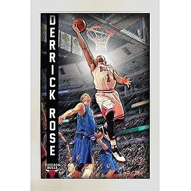 Derrick Rose Pop Out Framed Collage 20x32