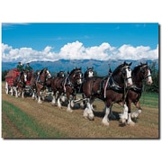 """Trademark Global """"Clydesdales in Blue Sky Mountains"""" Canvas Art, 14"""" x 19"""""""