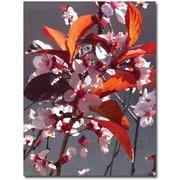 "Trademark Global Amy Vangsgard ""Pink Tree Blossoms"" Canvas Art, 24"" x 18"""