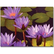 "Trademark Global Amy Vangsgard ""Water Lilies"" Canvas Art, 35"" x 47"""