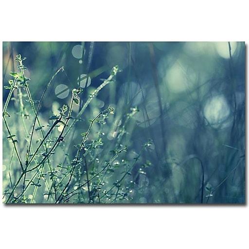 "Trademark Global Beata Czyzowska Young ""Blues in the Morning"" Canvas Art, 30"" x 47"""