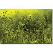 "Trademark Global Beata Czyzowska Young ""Symphony in Green"" Canvas Art, 16"" x 24"""