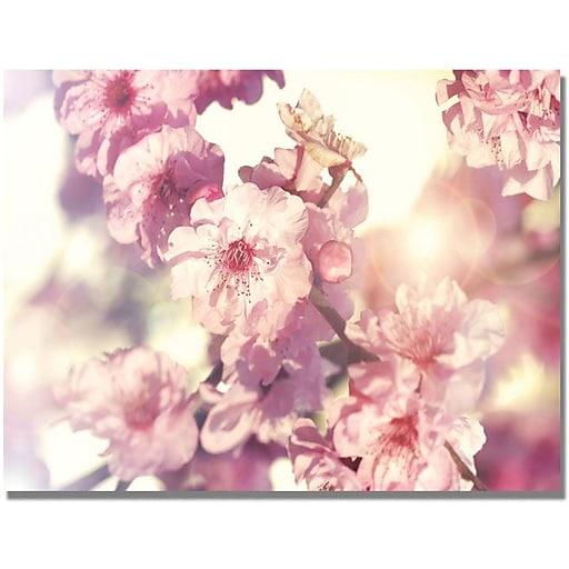 """Trademark Global Beata Czyzowska Young """"Spring Melody"""" Canvas Art, 30"""" x 47"""""""