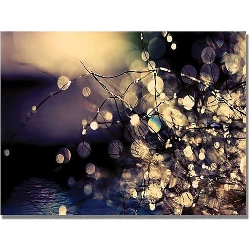 "Trademark Global Beata Czyzowska Young ""Fairies in my Garden"" Canvas Art, 30"" x 47"""