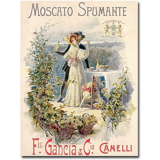 "Trademark Global Cesare Saccaggi ""Moscato Spumante"" Canvas Art, 47"" x 30"""