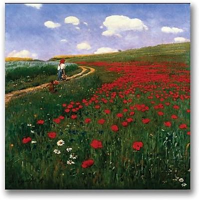 "Trademark Global Pal Szinyei Merse ""The Poppy Field"" Canvas Art, 18"" x 18"""