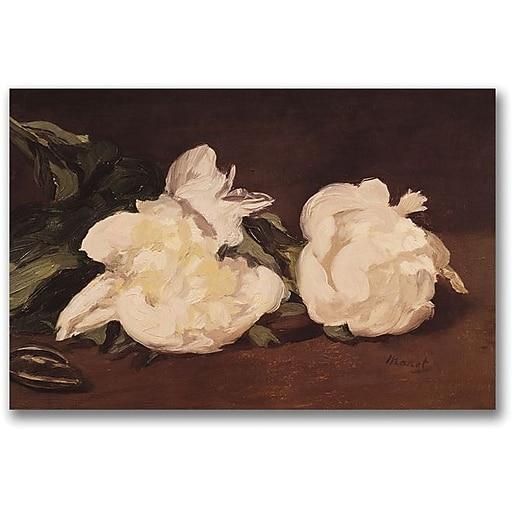 "Trademark Global Eduard Manet ""Branch of White Peonies"" Canvas Art, 35"" x 47"""