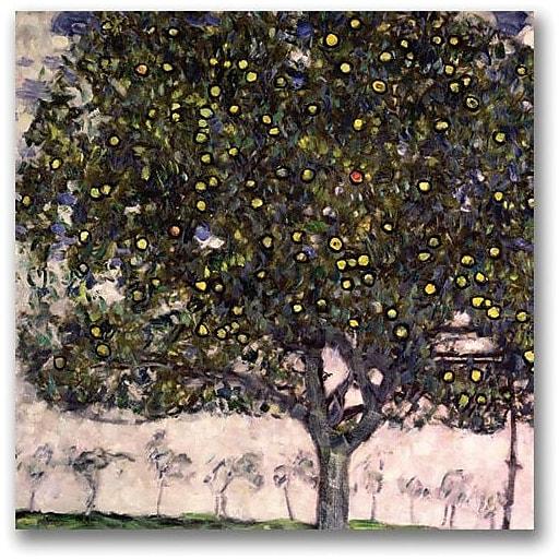 "Trademark Global Gustav Klimt ""The Apple Tree"" Canvas Art, 24"" x 24"""
