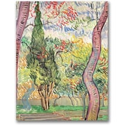 "Trademark Global Vincent Van Gogh ""The Garden of St. Pauls Hospital"" Canvas Art, 47"" x 35"""