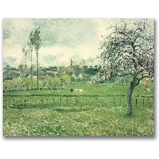 "Trademark Global Camille Pissarro ""Meadow at Eragny, 1885"" Canvas Art, 26"" x 32"""