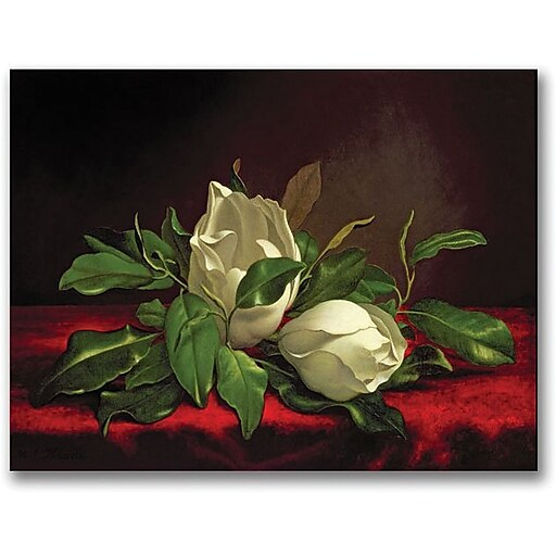 "Trademark Global Magnolia ""Magnolia"" Canvas Art, 30"" x 47"""