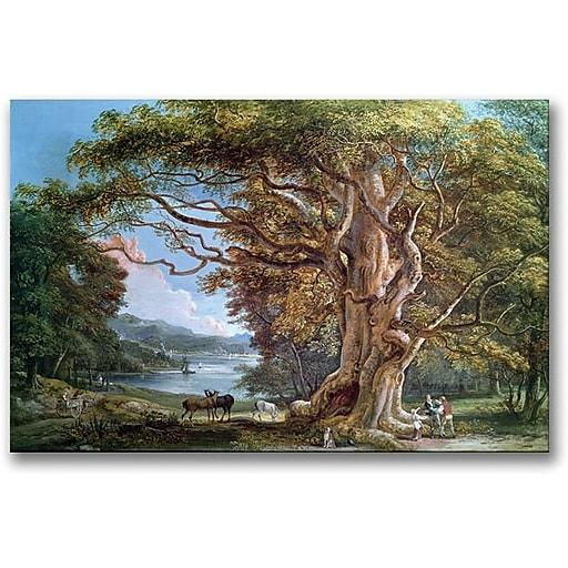 """Trademark Global Paul Sandby """"An Ancient Beech Tree, 1794"""" Canvas Art, 30"""" x 47"""""""
