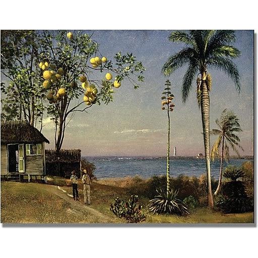 "Trademark Global Albert Biersdant ""Tropical Scene"" Canvas Art, 24"" x 32"""