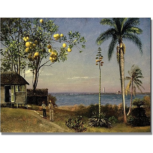 "Trademark Global Fredric Church ""Tropical Scene"" Canvas Art, 30"" x 47"""