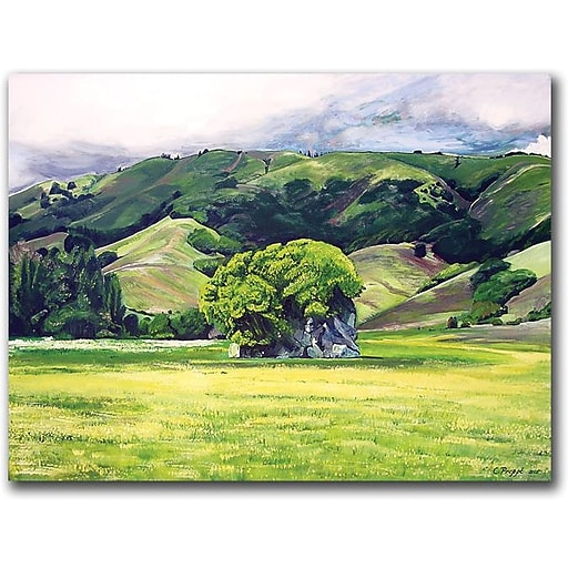 "Trademark Global Colleen Proppe ""Spirit Rock"" Canvas Art, 18"" x 24"""