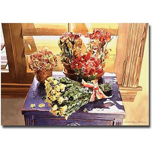 "Trademark Global David Lloyd Glover ""Sunshine Roses"" Canvas Art, 30"" x 47"""