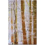 """Trademark Global Kathie McCurdy """"Rainbow Woods"""" Canvas Art, 47"""" x 30"""""""