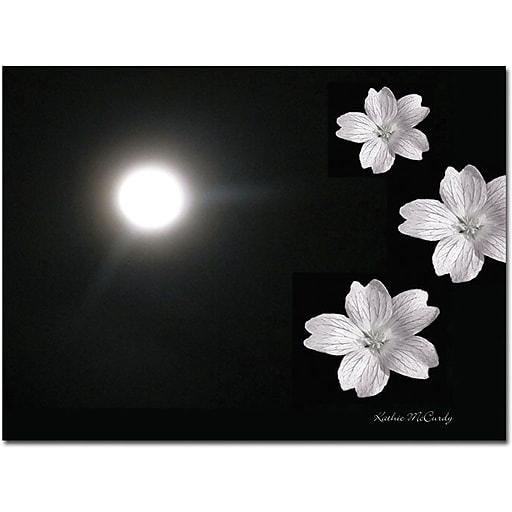 "Trademark Global Kathie McCurdy ""Summer Moon"" Canvas Art, 26"" x 32"""