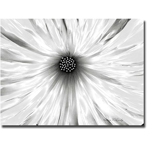 "Trademark Global Kathie McCurdy ""White Garden"" Canvas Art, 24"" x 32"""