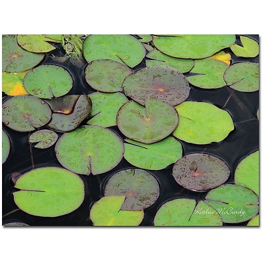 "Trademark Global Kathie McCurdy ""Frog in the Lily Pond"" Canvas Art, 35"" x 47"""