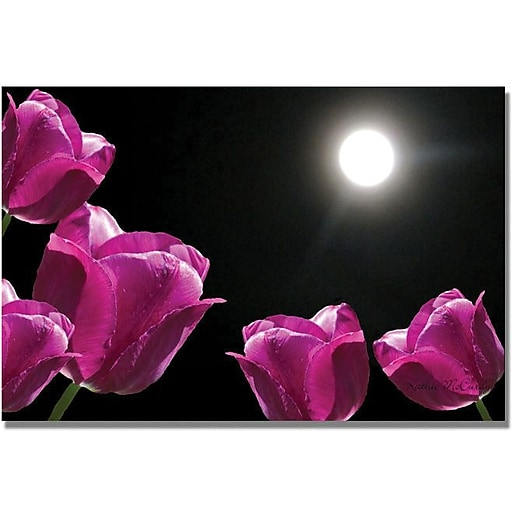 """Trademark Global Kathie McCurdy """"Tulips in the Moonlight"""" Canvas Art, 24"""" x 32"""""""