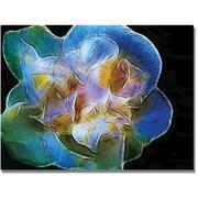 "Trademark Global Kathie McCurdy ""Big Blue Flower"" Canvas Art, 18"" x 24"""
