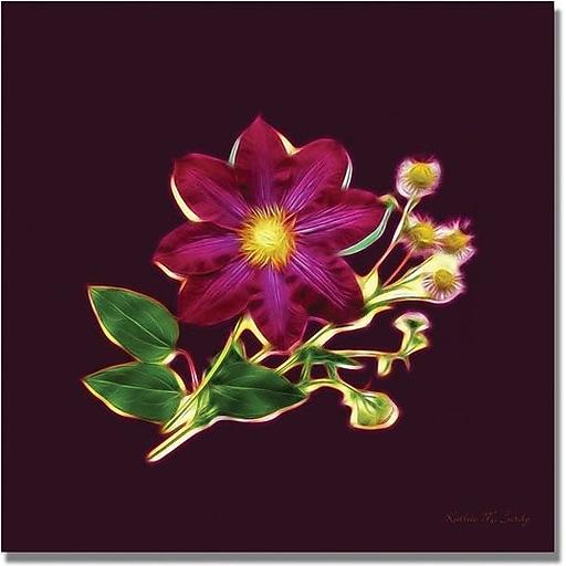 "Trademark Global Kathie McCurdy ""Clemata & Wild Daisy"" Canvas Art, 35"" x 35"""