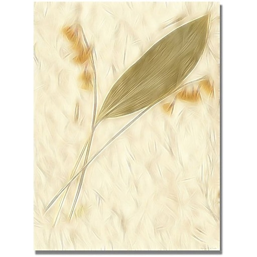 "Trademark Global Kathie McCurdy ""Lily of the Valley"" Canvas Art, 24"" x 18"""