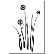 "Trademark Global Kathie McCurdy ""White and Black Bunch"" Canvas Art, 47"" x 35"""