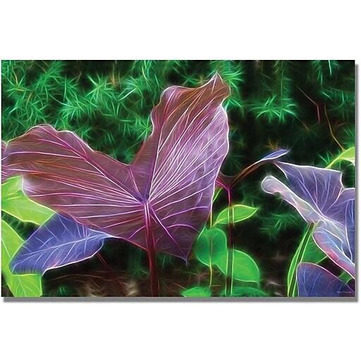 """Trademark Global Kathie McCurdy """"Hawaiian Garden II"""" Canvas Art, 35"""" x 47"""""""