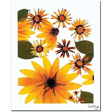 Trademark Global Kathie McCurdy 'Sunflower Cosmos' Canvas Art
