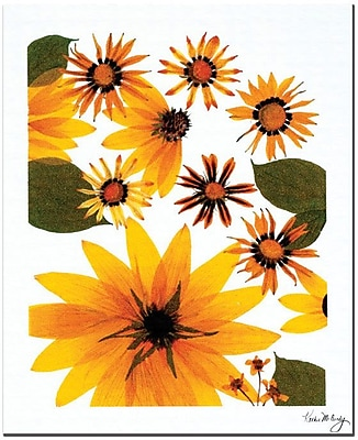 Trademark Global Kathie McCurdy 'Sunflower Cosmos' Canvas Art