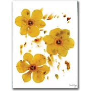 "Trademark Global Kathie McCurdy ""Daffodils on Paper"" Canvas Art, 24"" x 18"""