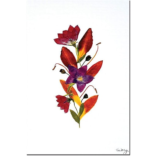 "Trademark Global Kathie McCurdy ""Flame"" Canvas Art, 24"" x 16"""