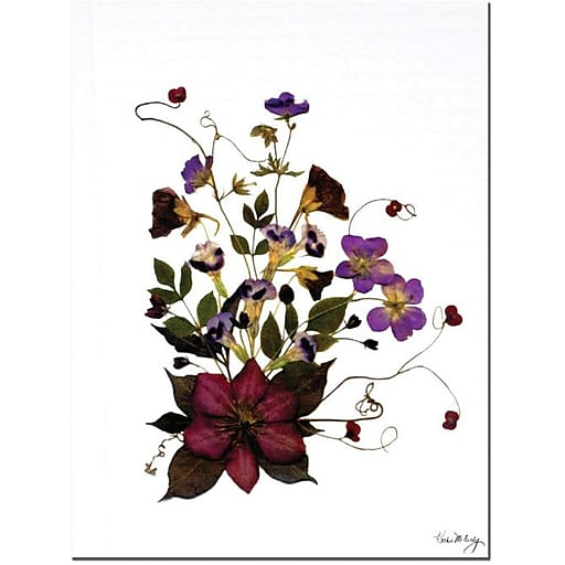"Trademark Global Kathie McCurdy ""Going Wild"" Canvas Art, 19"" x 14"""