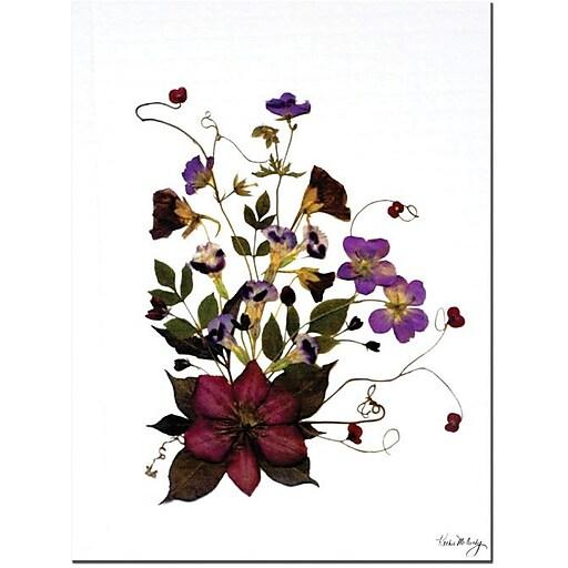 "Trademark Global Kathie McCurdy ""Going Wild"" Canvas Art, 47"" x 35"""