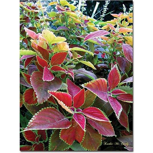"Trademark Global Kathie McCurdy ""Magical Garden I"" Canvas Art, 32"" x 24"""