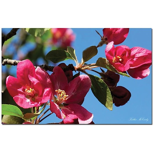 """Trademark Global Kathie McCurdy """"Apple Blossoms"""" Canvas Art, 14"""" x 19"""""""