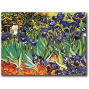 "Trademark Global Vincent Van Gogh ""Irises Saint-Remy"" Canvas Art, 14"" x 19"""