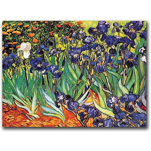 "Trademark Global Vincent Van Gogh ""Irises Saint-Remy"" Canvas Art, 18"" x 24"""