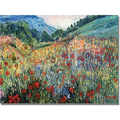 "Trademark Global ""Field of Wild Floweres"" Canvas Art, 30"" x 47"""