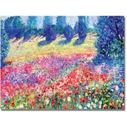 "Trademark Global Manor Shadian ""Poppies"" Canvas Art, 30"" x 47"""