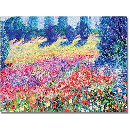 "Trademark Global Manor Shadian ""Poppies"" Canvas Art, 30"" x 47"""